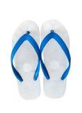 Pares de falhanços de aleta azuis Isolado no fundo branco com cópia Fotografia de Stock