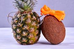 Pares de frutos do hawaiian da forma foto de stock