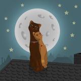 Pares de gatos no telhado Imagens de Stock Royalty Free