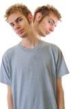 Pares de gêmeos siamese Imagem de Stock Royalty Free