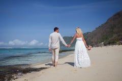 Pares de la boda apenas casados Imagen de archivo libre de regalías