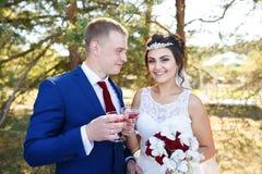 Pares de la boda con los vidrios de la vid Fotos de archivo