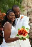 Pares de la boda del afroamericano Foto de archivo