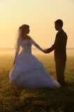 Pares de la boda del baile Imágenes de archivo libres de regalías