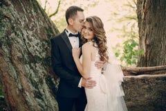 Pares de la boda en el parque Fotografía de archivo