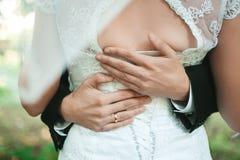 Pares de la boda que celebran las manos y el abrazo Fotografía de archivo