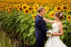 Pares de la boda que se colocan en el campo de girasoles Imagen de archivo libre de regalías
