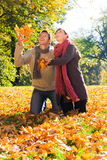 Pares de la caída del otoño Imagenes de archivo
