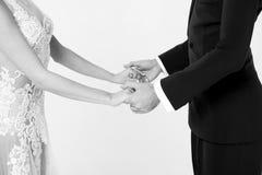Pares de la danza de Ballrom en el amor, llevando a cabo las manos aisladas en el bachground blanco Imagen de archivo libre de regalías