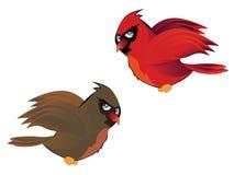 Pares de la historieta de cardenales stock de ilustración