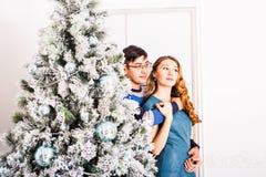 Pares de la Navidad Familia sonriente feliz en el país Imagenes de archivo