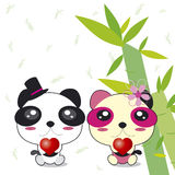 Pares de la panda libre illustration