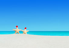 Pares de las estrellas de mar en los sombreros de Papá Noel en la playa tropical arenosa Fotos de archivo