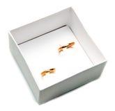 Pares de los anillos de bodas del oro Imagen de archivo