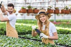 Pares de los jardineros con las palas que plantan las flores Fotos de archivo