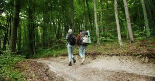 Pares de los turistas del Backpacker que caminan en bosque metrajes