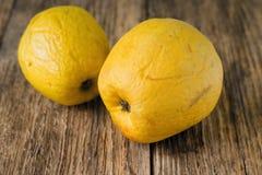 Pares de maçãs amarelas overripped Fotografia de Stock Royalty Free