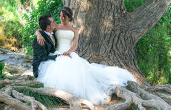 Pares de noivos na floresta fotografia de stock royalty free