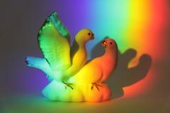 Pares de palomas Fotografía de archivo