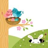 Pares de Pascua de pájaros Imagen de archivo libre de regalías