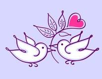 Pares de periquitos com flor do coração Fotos de Stock Royalty Free