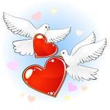 Pares de pombas com corações vermelhos Fotografia de Stock Royalty Free