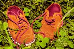 Pares de sapatas da criança no campo de grama Fotos de Stock
