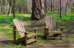 Pares de sillas del adirondack en el bosque Fotos de archivo libres de regalías