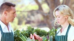 Pares de sorriso do fazendeiro que guardam uma cesta vegetal filme