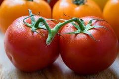 Pares de tomates vermelhos molhados frescos Imagens de Stock