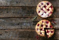 Pares de tortas agrias Fotografía de archivo libre de regalías