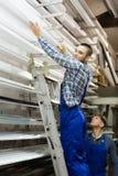Pares de trabalhadores que escolhem o PVC da janela Imagens de Stock