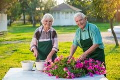 Pares de viejos jardineros Fotos de archivo libres de regalías