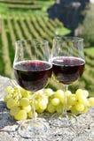 Pares de wineglasses e de uvas Fotos de Stock Royalty Free