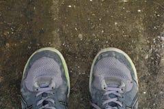 Pares de zapatos del deporte Fotografía de archivo libre de regalías