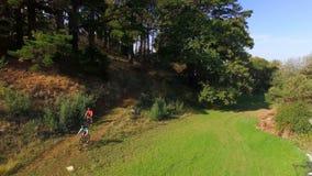 Pares del caminante que completan un ciclo en el bosque almacen de video