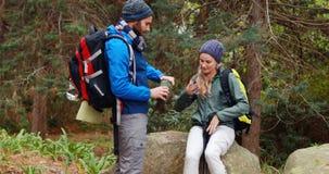 Pares del caminante que obran recíprocamente con uno a en bosque almacen de metraje de vídeo