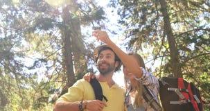 Pares del caminante que se colocan y que señalan lejos en bosque almacen de video