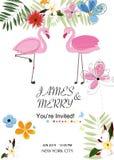 Pares del flamenco Tarjeta colorida de la invitación de la boda Tema del flamenco Flores tropicales Fiesta de bienvenida al bebé, Fotos de archivo libres de regalías