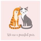 Pares del gato del día del ` s de la tarjeta del día de San Valentín Imagen de archivo