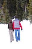 Pares del invierno fotografía de archivo libre de regalías