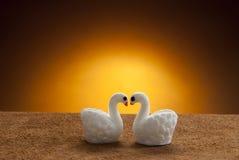 Pares del pato - regalo para la tarjeta del día de San Valentín Foto de archivo