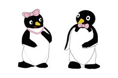 Pares del pingüino Imagen de archivo