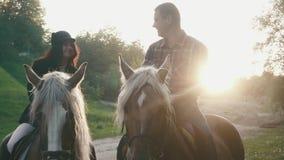 Pares del primer de los caballos de montar a caballo profesionales de los jinetes en el camino del campo, hablando y sonriendo el almacen de video