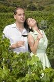 Pares del vino agrario de la gente en viñedo Foto de archivo libre de regalías