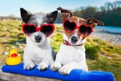 Pares do amor em férias Fotografia de Stock