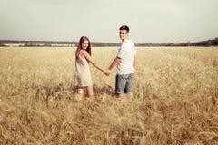 Pares do amor que andam no campo que guarda as mãos Fotos de Stock