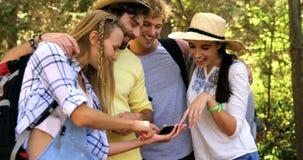 Pares do caminhante que olham o smartphone video estoque