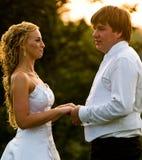 Pares do casamento Foto de Stock