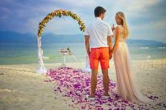 Pares do casamento apenas casados Fotos de Stock Royalty Free